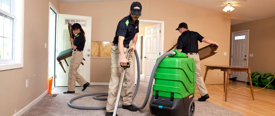 Westbury, NY cleaning services